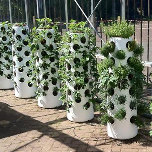 vertical-garden-tube-met-losse-planten-en-aarde